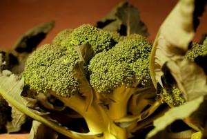 Brokuł bio